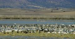 Klamath National Wildlife Refuge