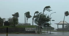 Powerful Hurricane Force Winds Lash City Streets