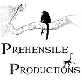 Prehensile Productions Video Profile
