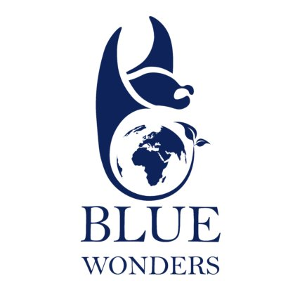 BLUE wonders  Video Profile