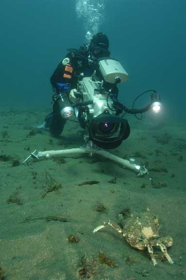 Underwater Art Video Profile
