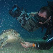 Plankton Productions Pty Ltd. Video Profile
