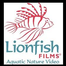 Lionfish Films Video Profile