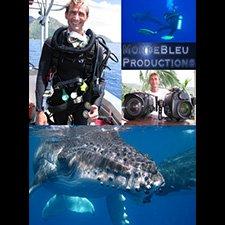 Nicolas Malivet - MondeBleu Productions Video Profile