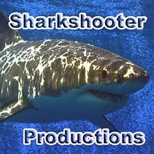 Sharkshooter Productions Video Profile