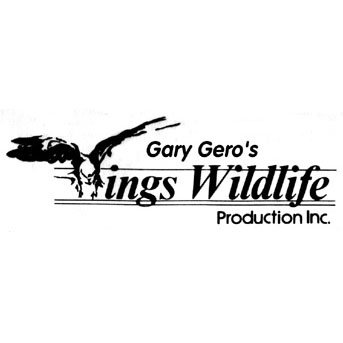 Wings Wildlife Productions Video Profile