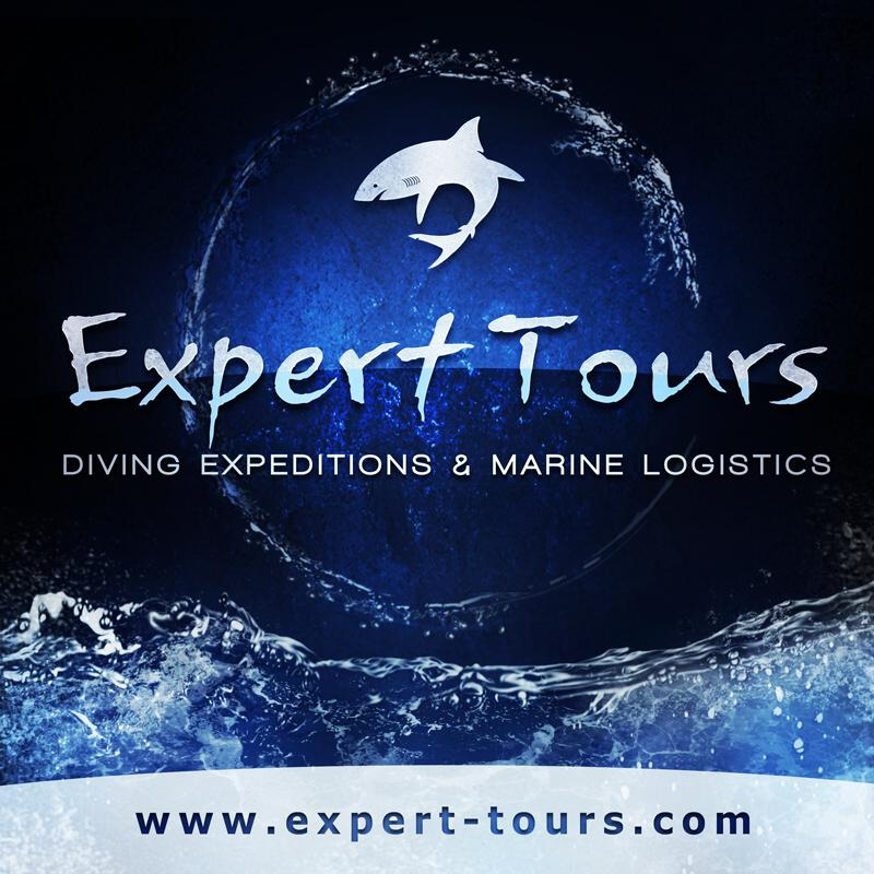 Expert Tours Stock Footage Collection