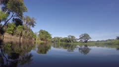 Boat ride along a river in the Pantanal wetlands, Brazil, Point of view.