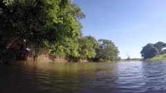Boat ride along a river in the Pantanal wetlands, Brazil.
