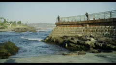 People walking along a man-made sea wall at the Children's Pool in La Jolla, Harbor Seals rest on beach, camouflaged like rocks or boulders