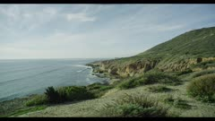 Beautiful Southern California coastline with native plants and ocean waves