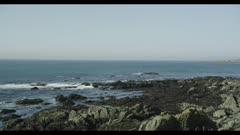 American Herring Gulls over rugged Southern California coastline
