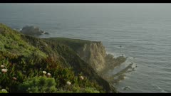 Beautiful Southern California coastline with native and invasive plants (Iceplant), at sunrise or sunset