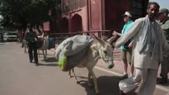 People Walking with their Donkeys
