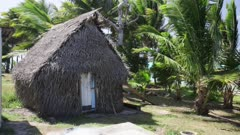 Palm trees blowing in wind next to hut