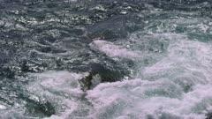 Water Rushing in Big Sur