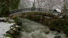 Lithia Park in Ashland after a winter snow storm