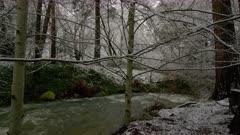 Winter snow in Lithia Park, Ashland, Oregon
