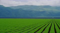 Agriculture fields near the Grapevine in Southern California