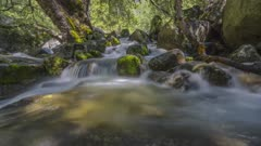 Rail time lapse of a stream in Yosemite National Park