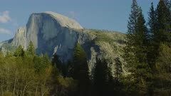 Half Dome and trees on sunny day