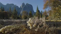 Mountains in Yosemite valley on sunny day