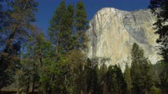 El Capitan with fall trees in foreground