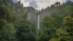 Multnomah Falls surrounded with trees