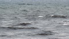 Rough ocean waves in southern Sweden