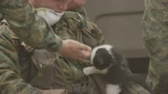 Ensenada, Chile - April 27, 2015: CU soldiers feed two kittens