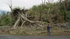 Man taking a picture of a tree uprooted in a tropical storm