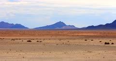 Extreme wide shot of Wild horses walking on the Garub desert