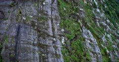 Close up of the Striations showing the glacial erosion at Milford Sound