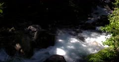 Lake Marian falls, waterfall gushing at Fiordland National Park