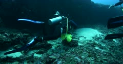 Divers have positioned the Acoustic beacon and remove the lift,Buoyancy bags.