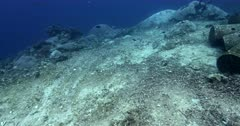 A reveal shot of a mooring point in the ocean where the coral reef is totally destroyed.