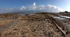 Remnants of the extinct seaweed farming
