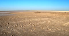 A low aerial shot along the wet,flooded Makgadikgadi pan that has dried to form a salt crust, then rising way above showing the flooded areas in the distance.