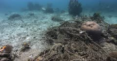 A reveal shot of a large Ghost net laying entwined on the ocean bed.