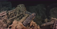 Close up, tracking shot of motor bike remains, in the hold of the Thistlegorm Shipwreck.