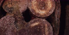 A reveal close up shot showing the date of 1929 on the shell on the Thistlegorm shipwreck.