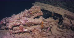 The remains of rifles and motorbikes, in the hold of the Thistlegorm Shipwreck with a school of Soldierfish.
