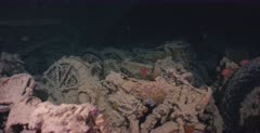 Motor bikes in the hold of the Thistlegorm Shipwreck with Soldierfish.