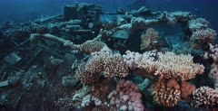 A tracking shot of the Heaven One, Liveaboard shipwreck over the engines and coral that has grown.