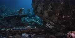 A wide shot of the bow of the Heaven One, Liveaboard shipwreck.