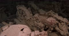 Close up shot of bikes and Soldierfish on the Thistlegorm.