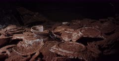 Close up shot of Broken Crockery on the Heian Maru Shipwreck.