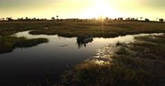 Aerial shot of Tourists fishing on the Okavango Delta