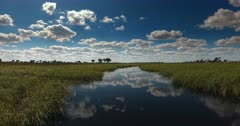A wide shot of reflections on the Okavango river.