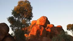 a close up vertical pan of the devil's marbles in australia's northern territory at sunrise